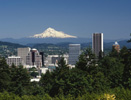 Advertise jobs, facilities, contract manufacturing, events and your company's services through OregonLifeScience.com.