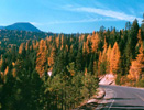 Welcome to OregonLifeScience.com
